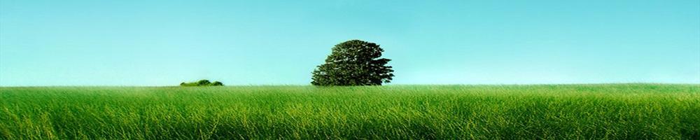 www.moisrex.rozblog.com-header